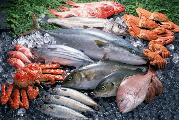 На каменной тропинке и траве лежит несколько видов рыб и морепродуктов