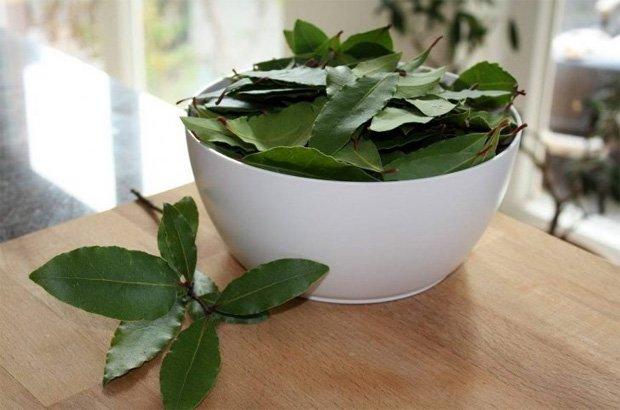 На столе белая миска с листьями лаврушки